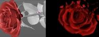 Cinema 4D R18 花瓣破碎特效视频教学