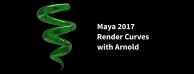 Arnold 5曲线渲染功能视频教学