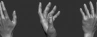zbrush手掌雕刻视频教学