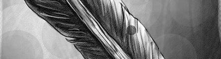 ABOUTCG CG共和国 绘制羽毛