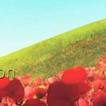 世界优秀艺术家 VFX Showreel 视频收集_4