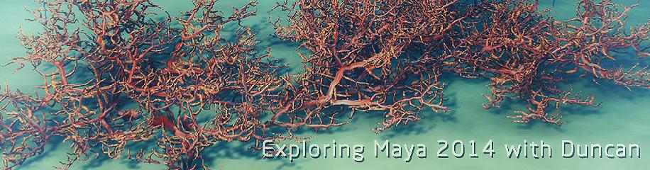 127_news_maya2014