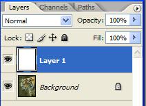 layershot