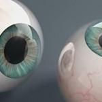 Cinema 4D 真实眼球建模贴图渲染视频教学