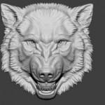 如何使用zbrush雕刻一颗浮雕狼头