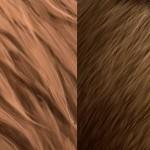 如何在photoshop里面绘制真实的毛发效果视频教学