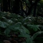 Unreal Engine 4森林建造视频教学1/5