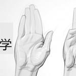 proko手掌结构讲解视频教学