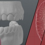 免费的牙齿牙龈贴图和模型