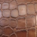 substance designer高质量鳄鱼皮肤程序纹理制作精讲